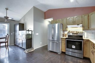 Photo 8: 163 Erin Meadow Green SE in Calgary: Erin Woods Detached for sale : MLS®# A1077161
