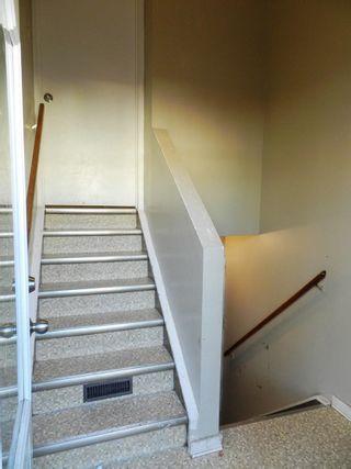 Photo 4: 196 MILLBOURNE Road E in Edmonton: Zone 29 House Half Duplex for sale : MLS®# E4246169