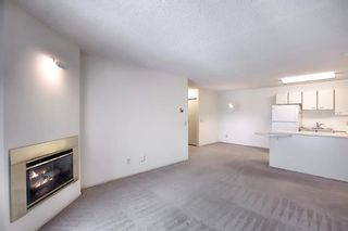 Photo 11: 2031 Edenwold Heights NW in Calgary: Edgemont Apartment for sale : MLS®# A1066741