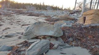 Photo 13: 5248 Port Morien Drive in Round Island: 207-C. B. County Vacant Land for sale (Cape Breton)  : MLS®# 202120892