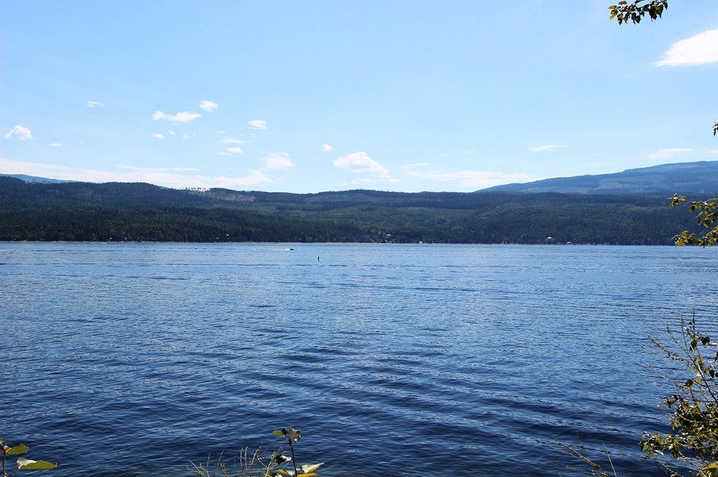 Photo 49: Photos: 8079 Squilax Anglemont Highway: St. Ives House for sale (North Shuswap)  : MLS®# 10179329