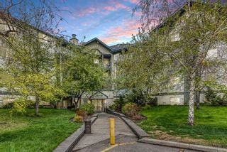 Main Photo: 314 20 Dover Point SE in Calgary: Dover Apartment for sale : MLS®# A1112592