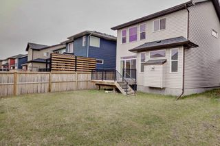 Photo 32: 18 EVANSFIELD Park NW in Calgary: Evanston Detached for sale : MLS®# C4295619