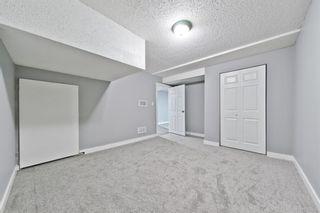 Photo 24: 1244 Falconridge Drive NE in Calgary: Falconridge Detached for sale : MLS®# A1067317