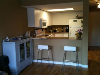 """Photo 4: 1A 1048 E 7TH Avenue in Vancouver: Mount Pleasant VE Condo for sale in """"WINDSOR GARDENS"""" (Vancouver East)  : MLS®# V849593"""