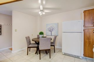 Photo 20: 9839 7 Street SE in Calgary: Acadia Detached for sale : MLS®# A1145363