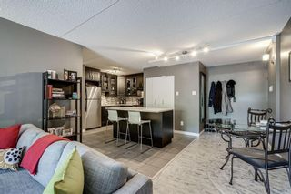 Photo 5: 307 735 12 Avenue SW in Calgary: Beltline Apartment for sale : MLS®# A1106354