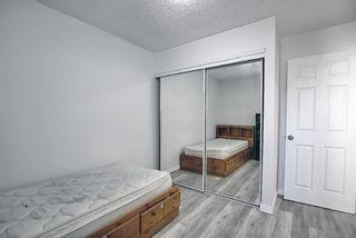 Photo 22: 6636 Temple Drive NE in Calgary: Temple Semi Detached for sale : MLS®# A1085203