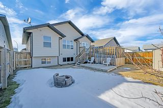 Photo 25: 101 Willow Green: Olds Detached for sale : MLS®# A1143950