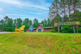 Photo 5: LK283 Summer Resort Location in Boys Township: Retail for sale : MLS®# TB212151
