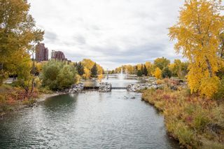 Photo 30: 547 222 Riverfront Avenue SW in Calgary: Chinatown Apartment for sale : MLS®# A1136653