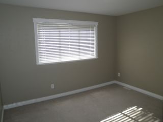 Photo 14: 23709 110B Avenue in Maple Ridge: Cottonwood MR House for sale : MLS®# R2114706