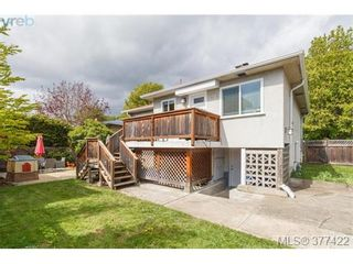 Photo 19: 1849 Gonzales Ave in VICTORIA: Vi Fairfield East House for sale (Victoria)  : MLS®# 757807