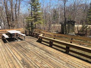 Photo 10: 89 Railway Street: Sandy Hook Residential for sale (R26)  : MLS®# 1911843