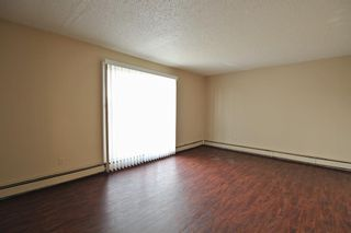 Photo 14: 5501 37 Street: Red Deer Multi Family for sale : MLS®# A1130594