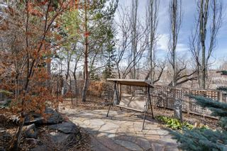 Photo 45: 2319 Juniper Road NW in Calgary: Hounsfield Heights/Briar Hill Detached for sale : MLS®# A1061277