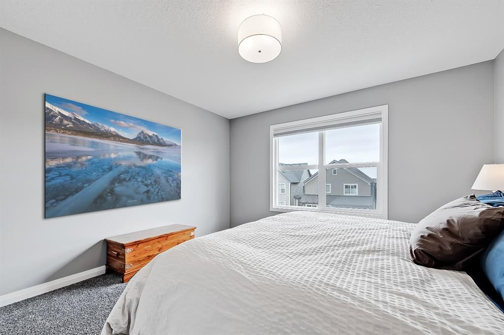 Photo 26: Photos: 188 Masters Rise SE in Calgary: Mahogany Detached for sale : MLS®# A1103205