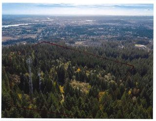 Photo 16: 3540 CONIFER Drive in Coquitlam: Burke Mountain Land Commercial for sale : MLS®# C8034887