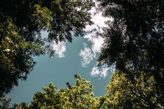Photo 1: Lt 4 Spruce Ave in : Isl Gabriola Island Land for sale (Islands)  : MLS®# 877923