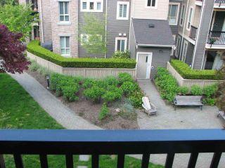 """Photo 1: 313 21009 56 Avenue in Langley: Salmon River Condo for sale in """"CORNERSTONE"""" : MLS®# R2454324"""