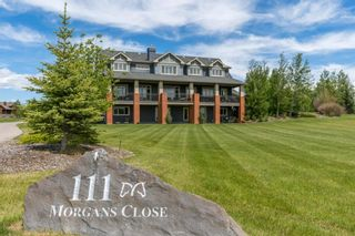 Photo 3: 111 Morgans Close in Rural Rocky View County: Rural Rocky View MD Detached for sale : MLS®# A1123491