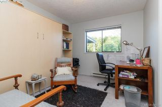 Photo 17: 3991 Hopesmore Dr in VICTORIA: SE Mt Doug House for sale (Saanich East)  : MLS®# 801374