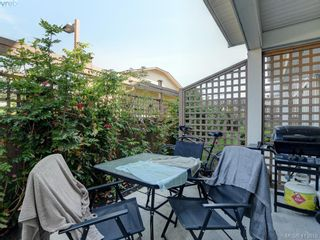 Photo 18: 11 3356 Whittier Ave in VICTORIA: SW Rudd Park Row/Townhouse for sale (Saanich West)  : MLS®# 820607