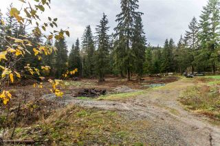"""Photo 11: 29684 DEWDNEY TRUNK Road in Mission: Stave Falls House for sale in """"Stave Lake"""" : MLS®# R2122636"""