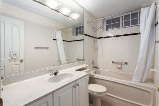 Photo 15: 488 W 22ND Avenue in Vancouver: Cambie House for sale (Vancouver West)  : MLS®# R2032117