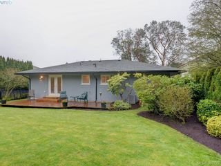 Photo 17: 2526 Kilgary Pl in VICTORIA: SE Cadboro Bay House for sale (Saanich East)  : MLS®# 783121