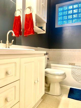 Photo 15: 5316 51 Avenue: Wetaskiwin House for sale : MLS®# E4255430