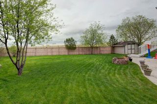 Photo 32: 325 CORAL SPRINGS Place NE in Calgary: Coral Springs Detached for sale : MLS®# A1066541