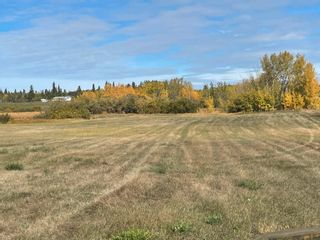 Photo 4: RR 230 Twp 492: Rural Leduc County Rural Land/Vacant Lot for sale : MLS®# E4263882