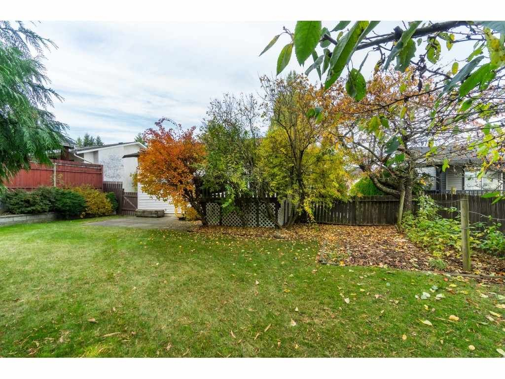 Photo 20: Photos: 3265 CHEAM Drive in Abbotsford: Abbotsford West House for sale : MLS®# R2417176
