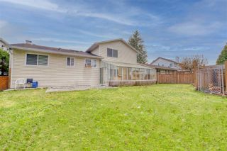 Photo 22: 20117 50 Avenue in Langley: Langley City House for sale : MLS®# R2542736