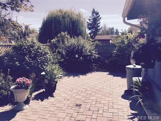 Photo 15: 4054 Willowbrook Pl in VICTORIA: SW Glanford House for sale (Saanich West)  : MLS®# 741421