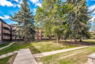 Photo 33: 432 11620 Elbow Drive SW in Calgary: Canyon Meadows Apartment for sale : MLS®# A1119842