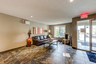 Photo 3: 213 1031 173 ST in Edmonton: Zone 56 Condo for sale : MLS®# E4265920
