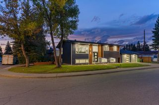 Photo 31: 10011 Warren Road SE in Calgary: Willow Park Detached for sale : MLS®# A1146129