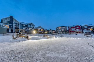Photo 46: 2437 Bayside Circle SW: Airdrie Detached for sale : MLS®# A1072878