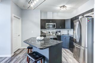 Photo 3: 420 392 SILVER_BERRY Road in Edmonton: Zone 30 Condo for sale : MLS®# E4262419