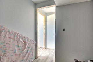 Photo 32:  in Edmonton: Zone 35 House for sale : MLS®# E4254409