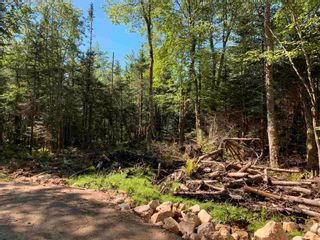 Photo 3: Lot 2 Parkwood Drive in Mill Cove: 405-Lunenburg County Vacant Land for sale (South Shore)  : MLS®# 202123260
