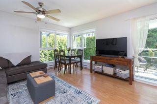 Photo 3: 203 2647 Graham St in Victoria: Vi Hillside Condo for sale : MLS®# 881492