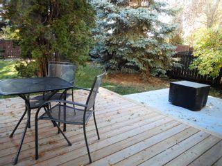 Photo 33: 6306 187 Street in Edmonton: Zone 20 House for sale : MLS®# E4266313