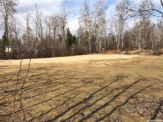 Photo 6: 214 Crestview Drive in Emma Lake: Lot/Land for sale : MLS®# SK851468