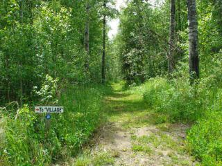 Photo 6: 41 Heron Point Cl: Rural Wetaskiwin County Rural Land/Vacant Lot for sale : MLS®# E4233949