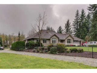 Photo 1: 30146 DEWDNEY TRUNK RD in Mission: Stave Falls House for sale : MLS®# F1440578