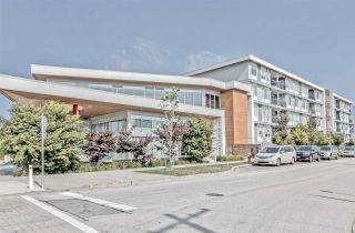 """Photo 26: 517 10011 RIVER Drive in Richmond: Bridgeport RI Condo for sale in """"PARC RIVERA"""" : MLS®# R2495331"""