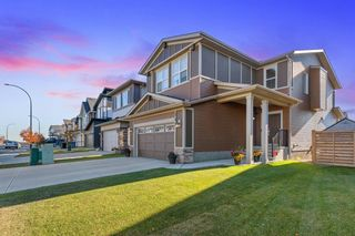 Photo 3: 162 Howse Rise NE in Calgary: Livingston Detached for sale : MLS®# A1153678